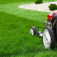 Lawn Envy - Consistent lawn mowing